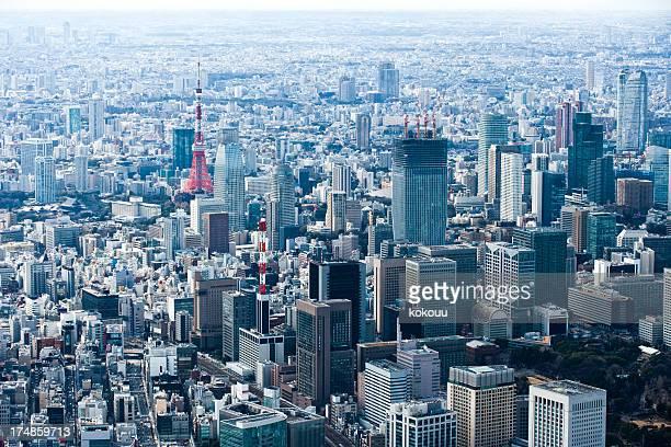 東京タワーの風景を一望します。
