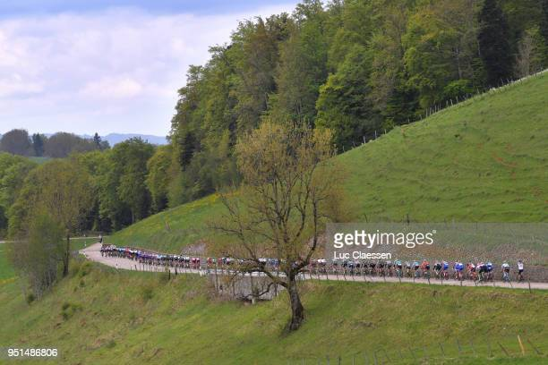 Landscape / Peloton / during the 72nd Tour de Romandie 2018, Stage 2 a 173,9km stage from Delemont to Yverdon-les-Bains on April 26, 2018 in...