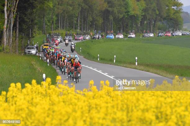 Landscape / Peloton / Flowers / during the 72nd Tour de Romandie 2018 Stage 5 a 1818km stage from MontsurRolle to Geneva on April 29 2018 in Geneva...