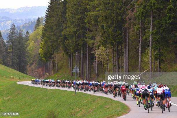 Landscape / Peloton / Forest / during the 72nd Tour de Romandie 2018, Stage 2 a 173,9km stage from Delemont to Yverdon-les-Bains on April 26, 2018 in...