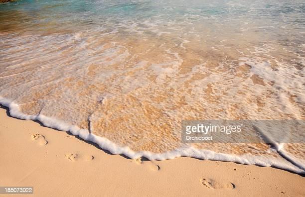 Landscape photograph of a sandy costal beach