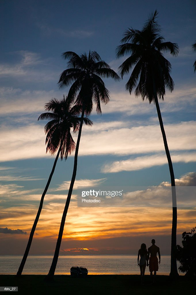 landscape photograph of a sunset at a beautiful beach as a silhouetted couple look onward : Foto de stock