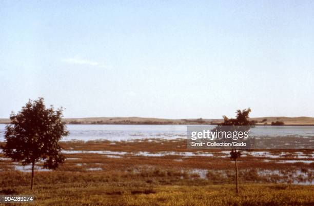 Landscape photograph of the marshy edge of a lake set in a flat grassy area with two trees visible in the foreground and distant hills in the...
