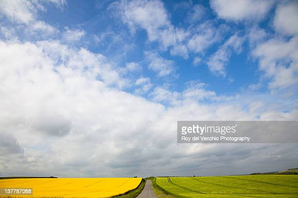 landscape - ardennes department france stock photos and pictures