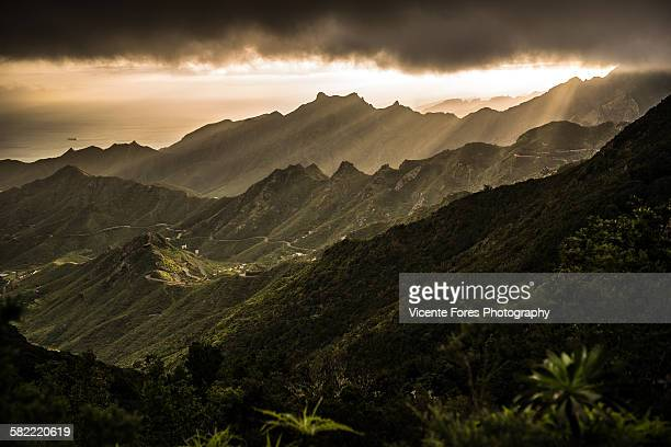 landscape - forens stock pictures, royalty-free photos & images