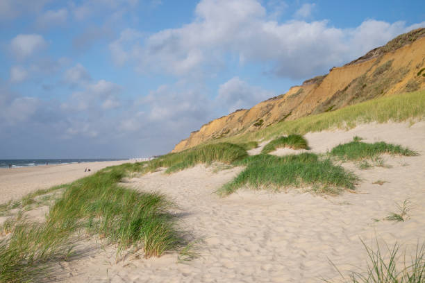 Landscape scenery of cliff on island Sylt