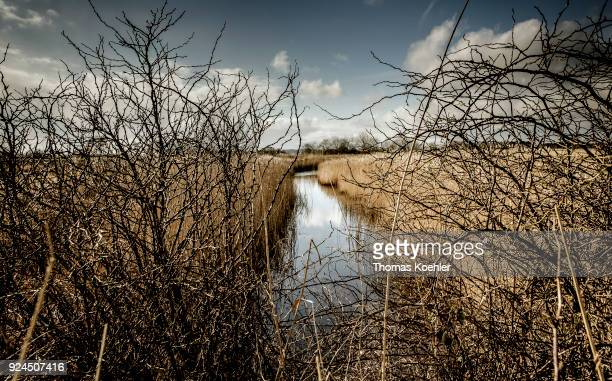 Landscape shot at Glowe on the island Ruegen A branch of the river meanders through a grassy landscape on February 05 2018 in Glowe Germany