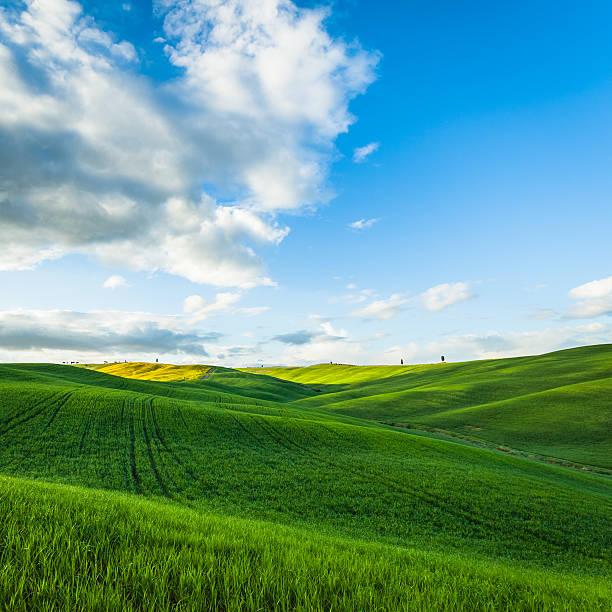 Landscape Tuscan hills