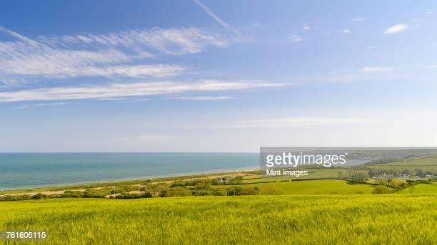 Landscape view across fields towards Slapton Sands and coastline in Devon.