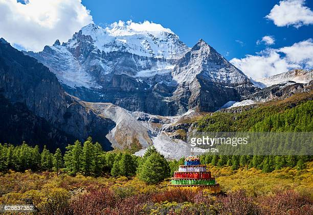 landscape view of a Tibetan Buddhist Tower made of pray flags sitting in the middle of yellow-orange-colored trees in autumn in the front of snow peak Xiannairi.