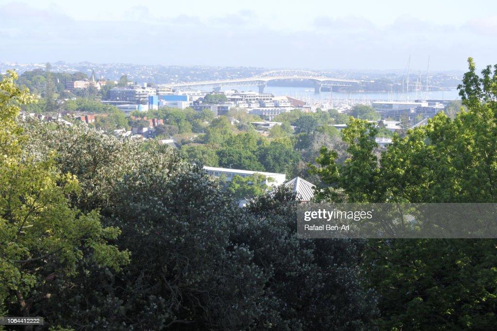 Landscape view of Auckland Harbour Bridge : Stock Photo
