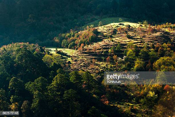 landscape view of north sikkim, india - sikkim stock pictures, royalty-free photos & images
