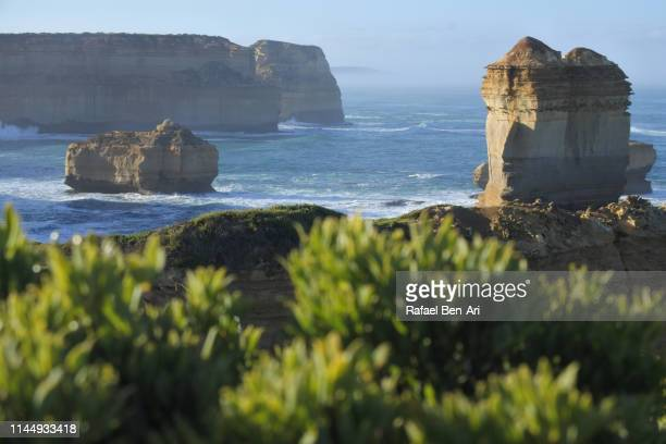 landscape view of sea cliffs and limestone stacks at port campbell national park victoria australia - rafael ben ari - fotografias e filmes do acervo