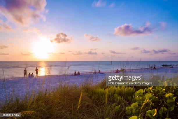 landscape view of the naples beach with quiet ocean, west florida - naples florida stock pictures, royalty-free photos & images