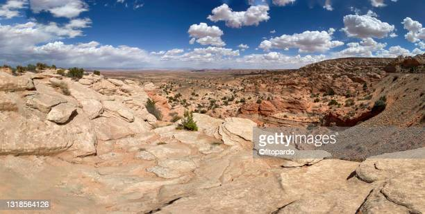 landscape view through the highway 89 in arizona - fitopardo stock pictures, royalty-free photos & images