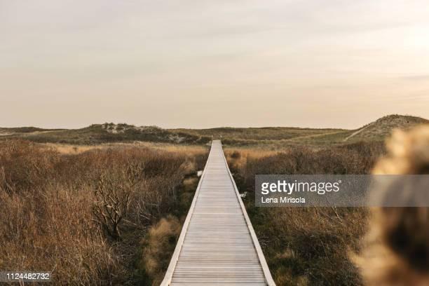 landscape view with coastal dune boardwalk,  menemsha, martha's vineyard, massachusetts, usa - marthas vineyard stock pictures, royalty-free photos & images