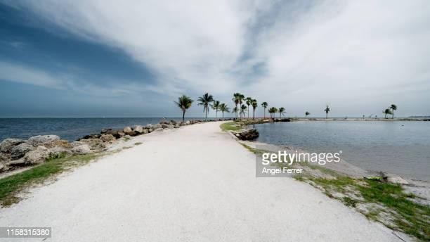 landscape way beach miami - costa caratteristica costiera foto e immagini stock