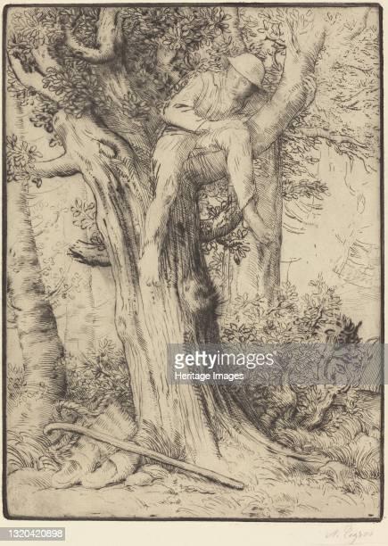 Landscape with a Boy in a Tree . Artist Alphonse Legros.