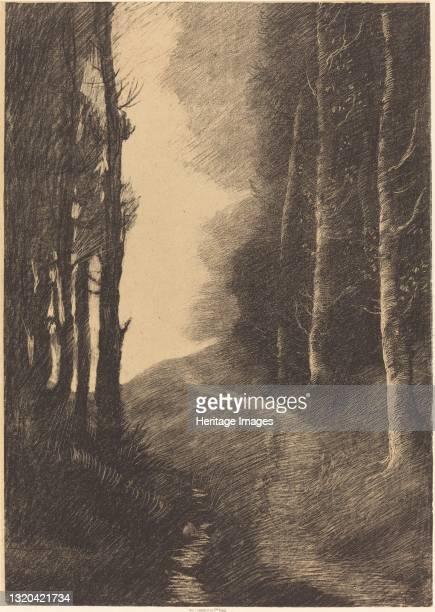Landscape with Birch Trees . Artist Alphonse Legros.