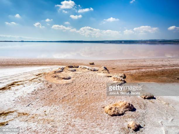 landscape with blue sky with white clouds reflected over calm water of a salty lake with pink background in salt mines of torrevieja, alicante, spain - lake bed stock pictures, royalty-free photos & images