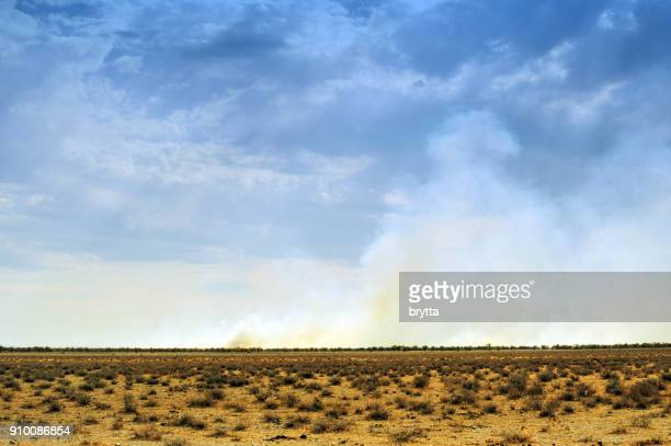 landscape with bush fires in the etosha national park,namibia - grass area stock pictures, royalty-free photos & images