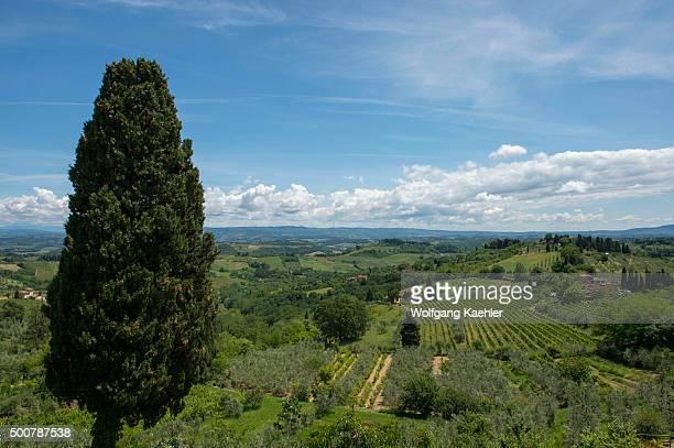 Landscape with fields near San Gimignano, Tuscany, Italy.