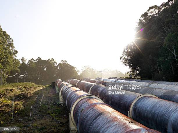 Landscape with four hydroelectric industrial pipes, Tasmania