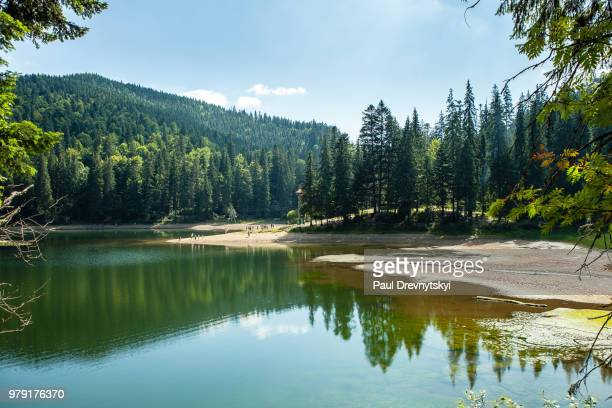 Landscape with lake and mountain, Carpathian, Ukraine