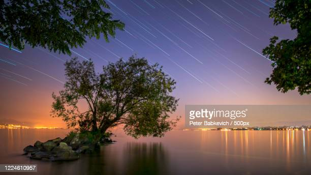 landscape with lake geneva and trees under star trails at night, switzerland - switzerland stock pictures, royalty-free photos & images