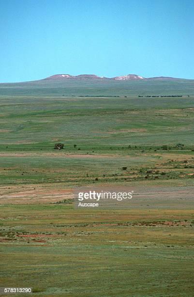 Landscape with mesa Sturt National Park far western New South Wales Australia