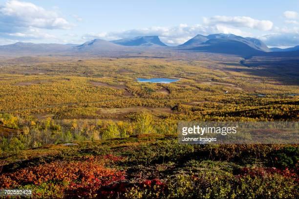 landscape with mountains on background - nabo sueco fotografías e imágenes de stock