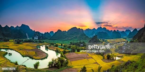 Landscape with rice field in Vietnam.