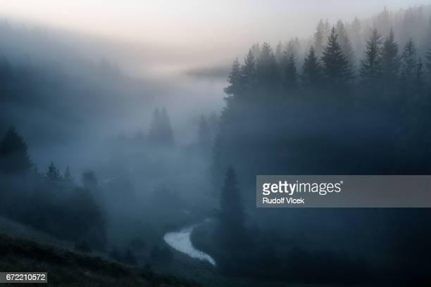 Landscape with river curve (meander) covered in morning fog