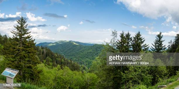 landscape with smoky mountain national park - newfound gap stock photos and pictures