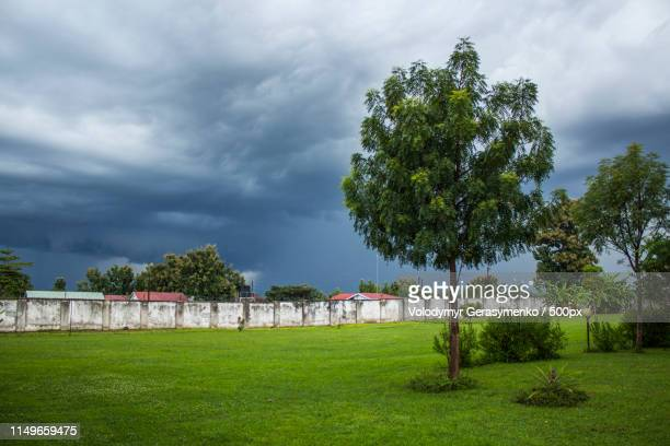 landscape with trees, lawn and wall - south sudan stock pictures, royalty-free photos & images