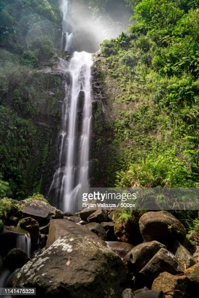 landscape with waterfall - guadeloupe photos et images de collection