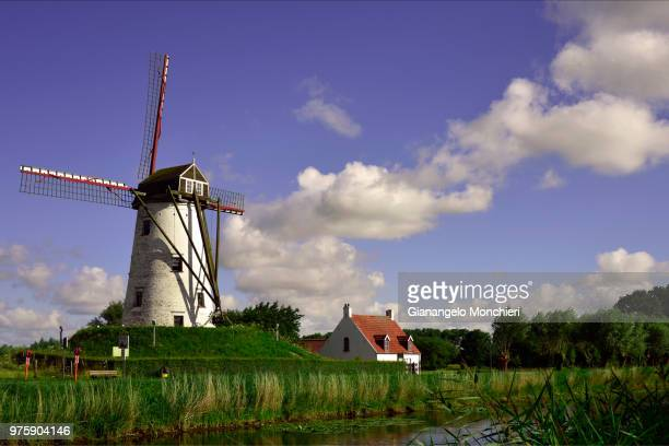 landscape with windmill, damme, west flanders, belgium - damme stock pictures, royalty-free photos & images