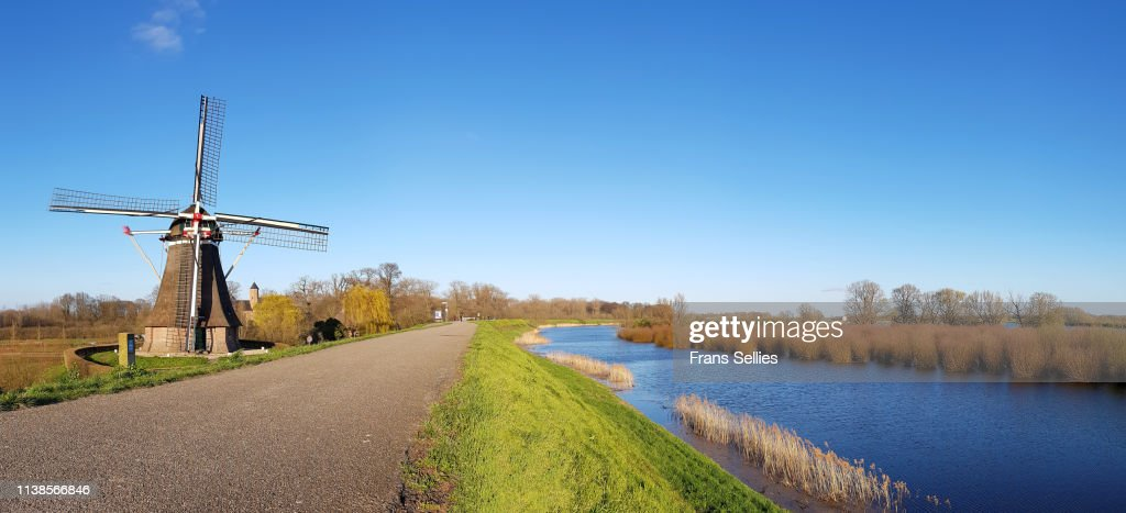 Landscape with windmill, dyke and river foreland, the Netherlands : Stock Photo