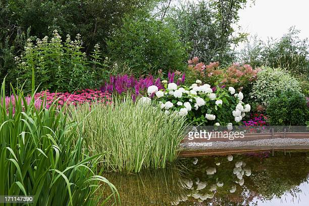 Landscaped Garden Pond