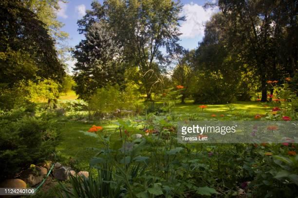 landscaped garden with rocks and flowers - garten stock-fotos und bilder