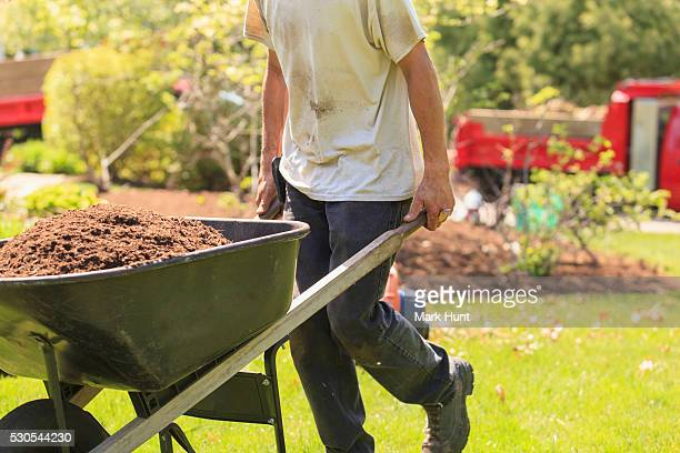 landscaper carrying mulch to a garden in wheelbarrow - mulch stock pictures, royalty-free photos & images