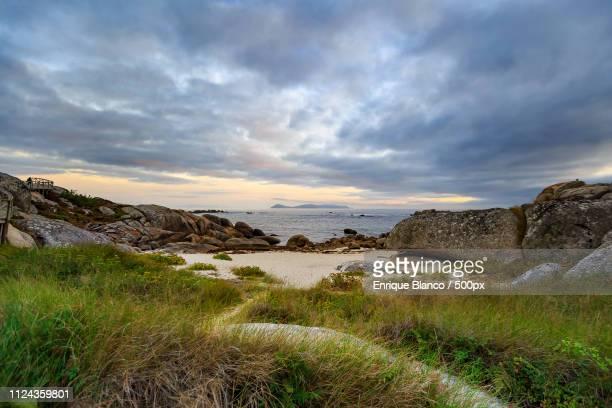 landscapes image - grove imagens e fotografias de stock