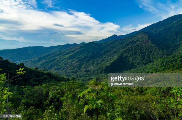 landscapes of the central jungle of peru in the city of ayacucho - paisajes de peru fotografías e imágenes de stock