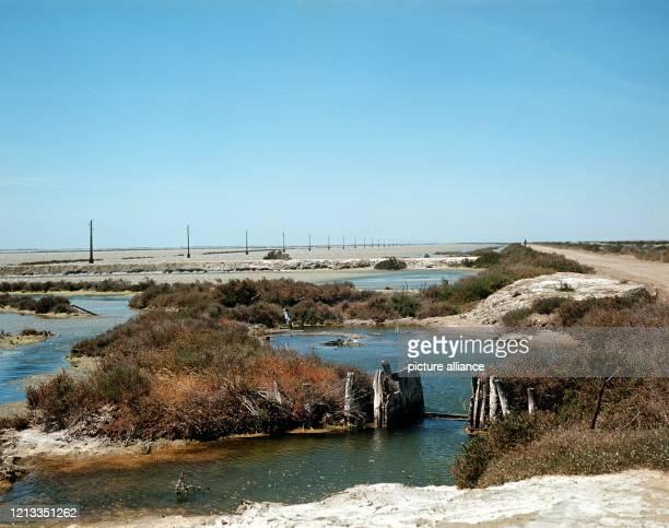 Landschaft entlang der Dammstraße, die von Salin de Giraud zwischen Lagune und Meer durch das Naturschutzgebiet bis nach Saintes Maries de la Mer...