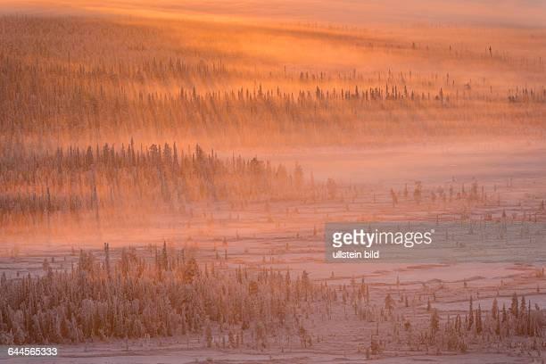 Landschaft im Gegenlicht SchwedischLappland Skandinavien