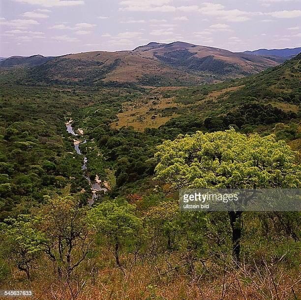 Landschaft im Hluhluwe-Reservat- o.J.