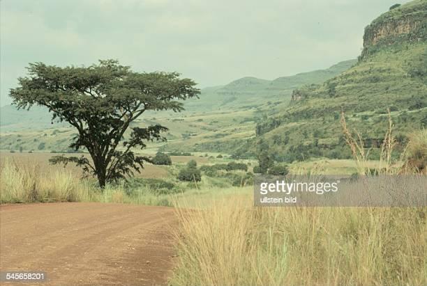 Landschaft in den Ausläufern derDrakensberge / Ost - Transvaal- 1990