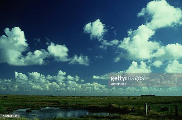 Landschaft in Hallig Hooge 1995