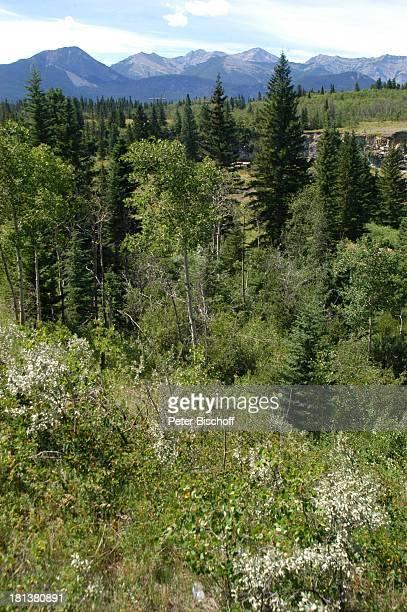 Landschaft, Kanaksis bei Calgary, Alberta, Kanada, Nordamerika, Wald, Berge, Reise,