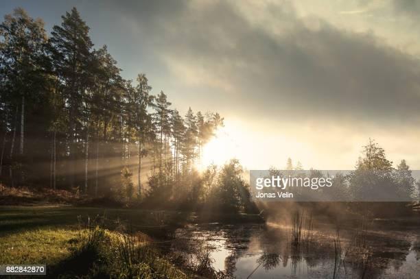 Landskap ik Sverige
